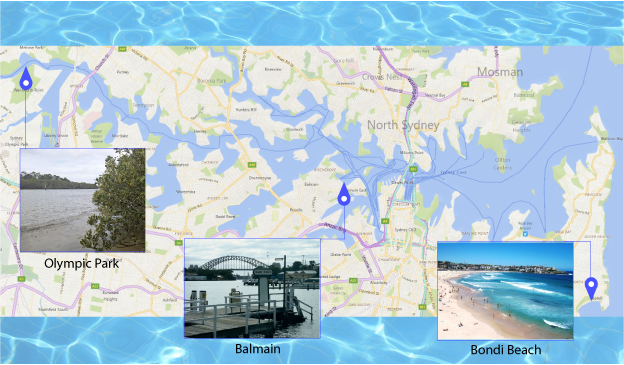 Parramatta River Sampling Sites