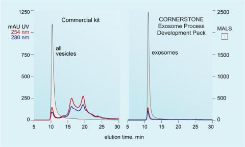 Cornerstone Development Pack versus Commercial Kit