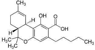 Molecular Structure of THCA
