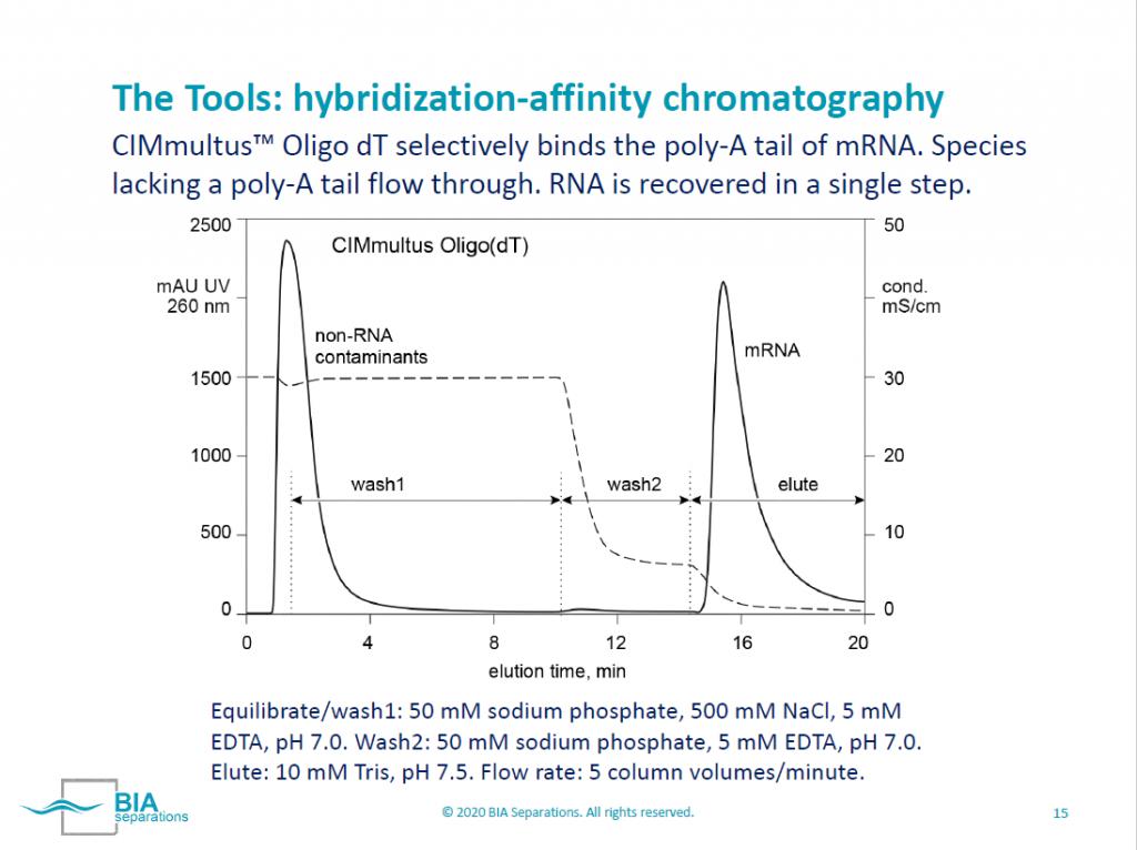 mRNA Hybridization Affinity Chromatography
